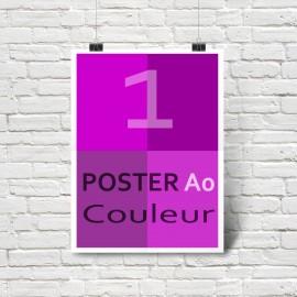 Affiche/Poster en couleurs A0