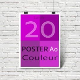 Lot de 20 affiches/posters A0