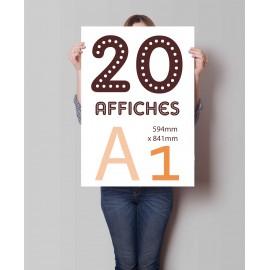 Lot de 20 affiches A1 en couleurs